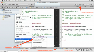 XCODE-GIT VUE DES CHANGEMENTS REMOTE : LOCAL